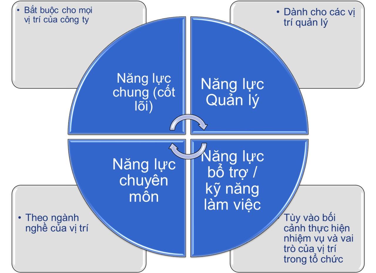 4 nhóm chính của khung năng lực